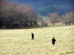 Another reposted photo from yesterday - a quick run in a Cades Cove field.