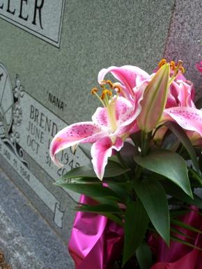 Brenda's Grave