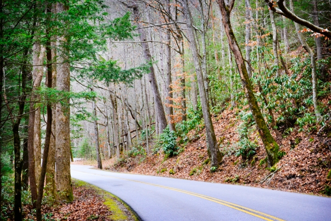 The road to Gatlinburg