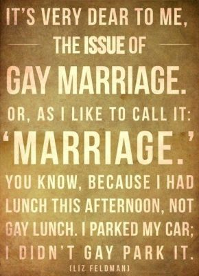 gay marriage funny