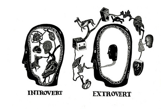 introverts raising an extrovert