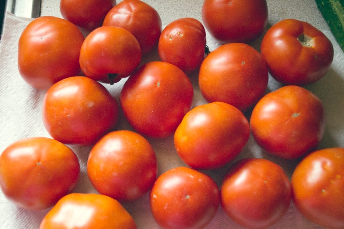 Tomatoes for salsa